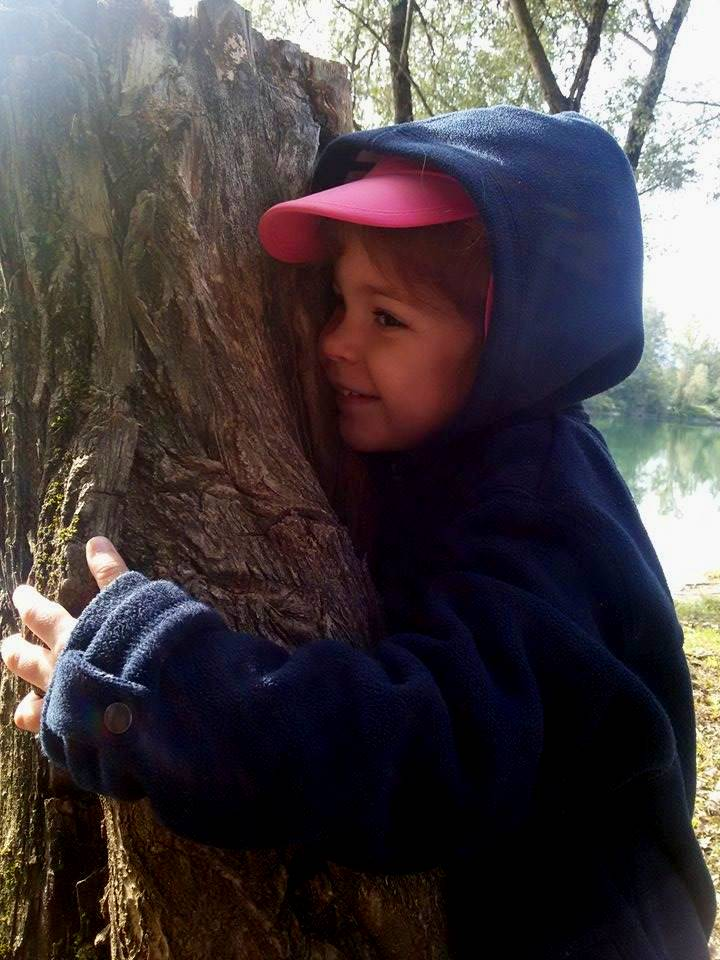 faire un calin à un arbre