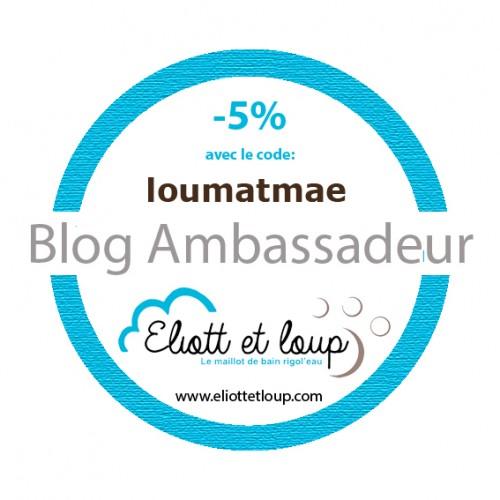 macaron loumatmae blog ambassadeur Eliott et loup