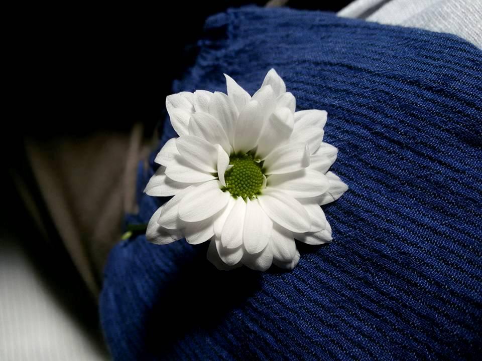 fleur by Loumatmae