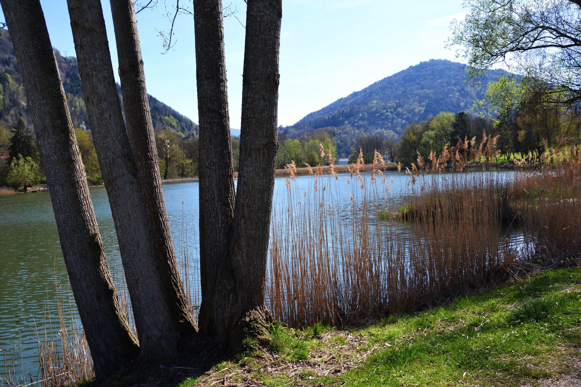 Lac de Détrier 73