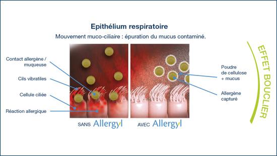 spray protection allergyl contre les allergènes